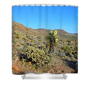 Springtime In The Cerbat Mountain Foothills Shower Curtain