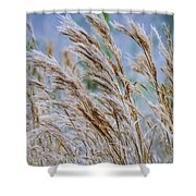 Springtime In The Field Shower Curtain