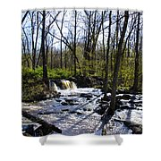 Springtime In The Mountains Shower Curtain