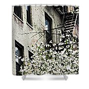 Springtime In Washington Heights Shower Curtain
