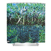 Springtime In Wekiva Shower Curtain