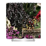 Springtime In Zebulon Center Shower Curtain