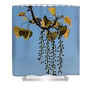 Springtime Jewelry Shower Curtain