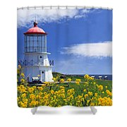 Springtime Lighthouse Shower Curtain