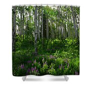 Springtime On The Grand Mesa Shower Curtain