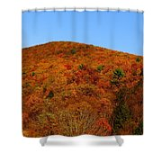 Sproul State Forest Shower Curtain