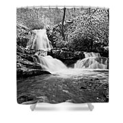 Spruce Flats Falls Shower Curtain