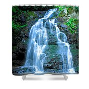 Spruce Flats Orchestra Shower Curtain