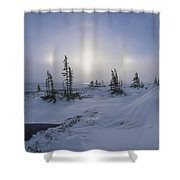 Spruce Forest With Sundogs Hudson Bay Shower Curtain