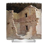 Spruce Tree House Structure Shower Curtain