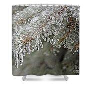 Spruce Under Glass Shower Curtain