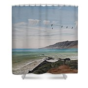 Squadron Of Pelicans Central Califonia Shower Curtain