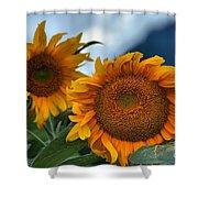 Squamish Sunflowers Shower Curtain