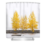 Square Diptych Tree 12-7693 Set 1 Of 2 Shower Curtain