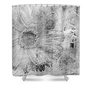 Square Series - Black White 5 Shower Curtain