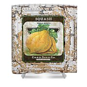 Squash On Vintage Tin Shower Curtain