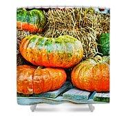 Squatty Orange Pumpkins Shower Curtain