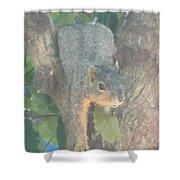 Squirrel Chillin Shower Curtain