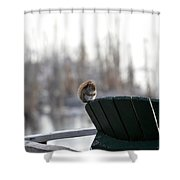 Squirrel Friend Shower Curtain