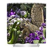 Squirrel In The Botanic Garden-dallas Arboretum V2 Shower Curtain