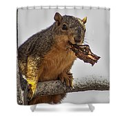 Squirrel Lunch Time Shower Curtain