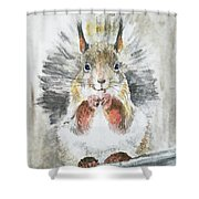 Squirrel Shower Curtain