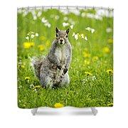 Squirrel Patrol Shower Curtain