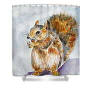 Squirrel With Nut Shower Curtain