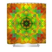 Sri Yantra Variation Mandala Shower Curtain