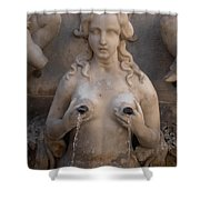 St. Andrew's Fountain Shower Curtain