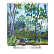 St. Andrew's Park Shower Curtain