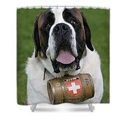 St. Bernard Dog Shower Curtain
