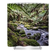 St Columba Falls Shower Curtain
