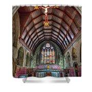 St David's Shower Curtain by Adrian Evans
