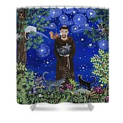 St. Francis And Spike Shower Curtain