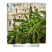 St. Louis Cathedral And Banana Trees New Orleans Shower Curtain
