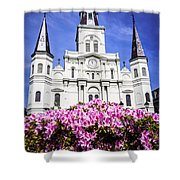 St. Louis Cathedral And Flowers In New Orleans Shower Curtain by Paul Velgos