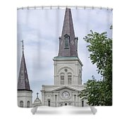 St. Louis Cathedral Through Trees Shower Curtain