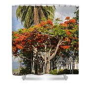 St. Mary's By The Sea Shower Curtain