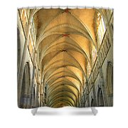 St. Maurice Cathedral In Vienne Shower Curtain