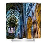 St Vitus Cathedral Shower Curtain
