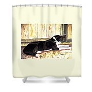 Stable Duty Shower Curtain by Angela Davies