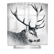 Stag In Black And White Shower Curtain