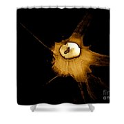Staggered Instantaneous Sight Shower Curtain
