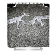 Stags Shower Curtain