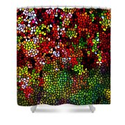 Stained Glass Autumn Leaves Reflecting In Water Shower Curtain