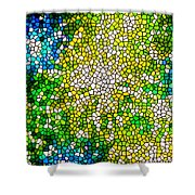 Stained Glass Beautiful Fireworks Shower Curtain
