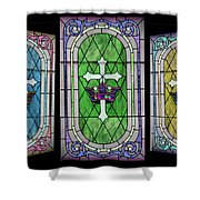 Stained Glass Beauty Shower Curtain