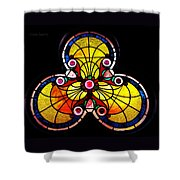 Stained Glass  Shower Curtain by Chris Berry