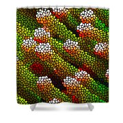 Stained Glass Coral Reef 1 Shower Curtain by Lanjee Chee